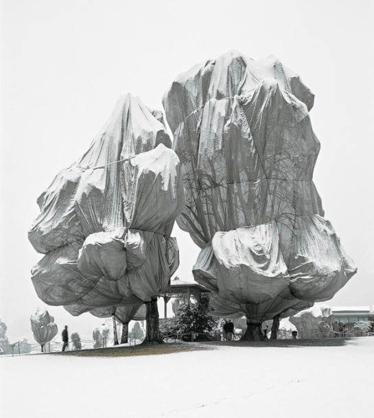 christo and jeanne-claude 1[4]