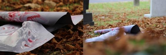 2 1 hojas de otoño en la carniceria