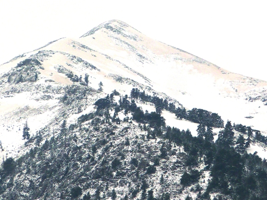 ultima nieve 2015 9s