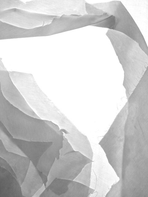 paper show precedent 2014 09 imprografika anthokosmos