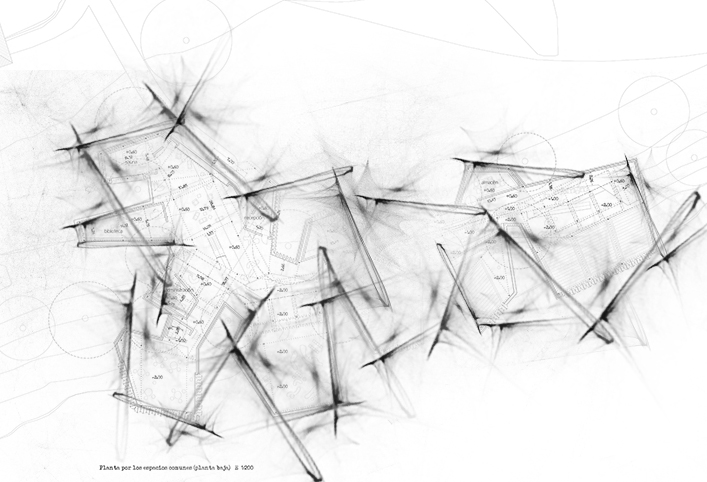 respuesta gráfica anthokosmos-alfonso perez lopez