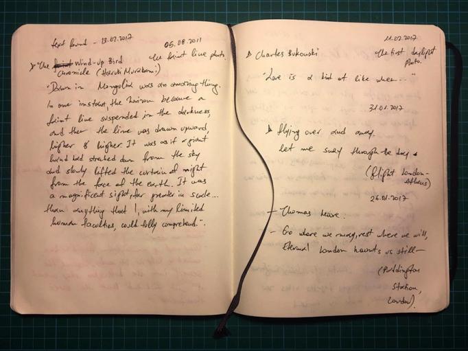 silv asim original diary imprografika 2017